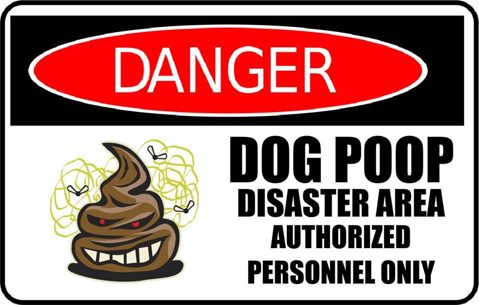 Dog Poop Disease Risks