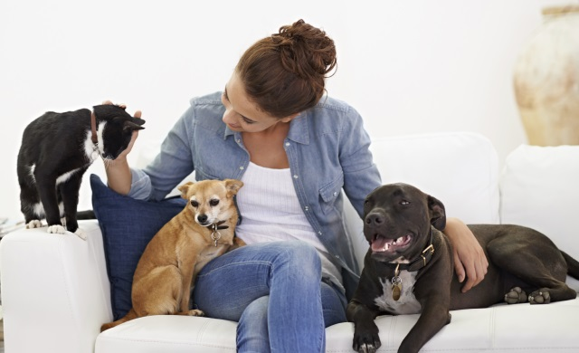 In Home Pet Sitting Services Oahu